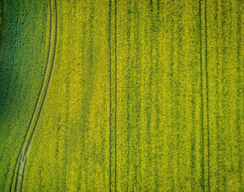 http://agriseiva.com.br/wp-content/uploads/2019/06/aerial-aerial-shot-aerial-view-753869.jpg