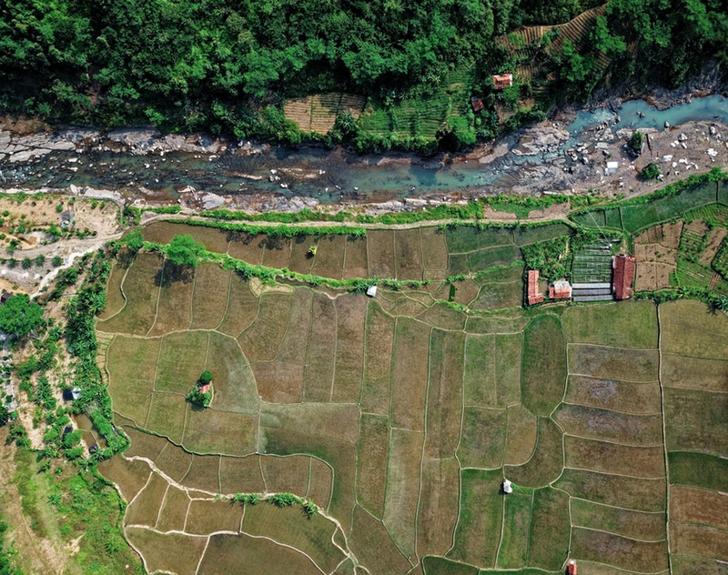 http://agriseiva.com.br/wp-content/uploads/2019/06/aerial-shot-bird-s-eye-view-cropland-1667597.jpg