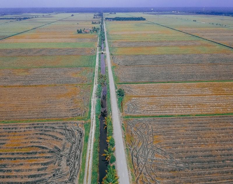 http://agriseiva.com.br/wp-content/uploads/2019/06/aerial-shot-bird-s-eye-view-cropland-2017363.jpg