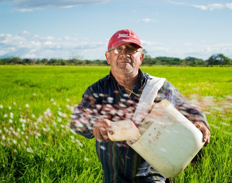 http://agriseiva.com.br/wp-content/uploads/2019/06/farm-farmer-field-50715.jpg